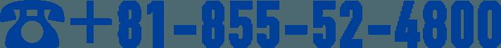 81-055-52-4800