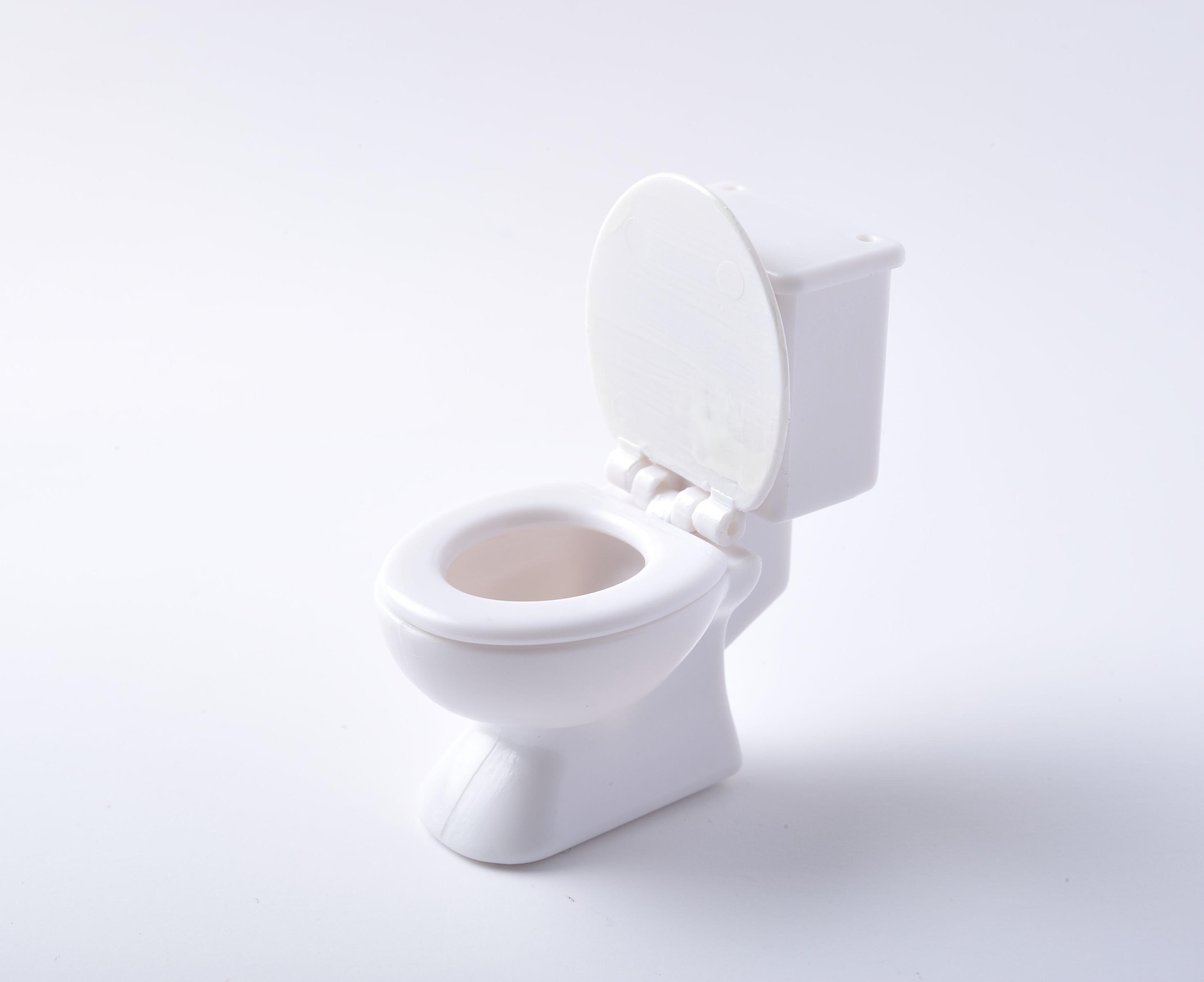 幼児期のしつけの難関!先輩ママが教える、トイレトレーニング成功への5つのポイント