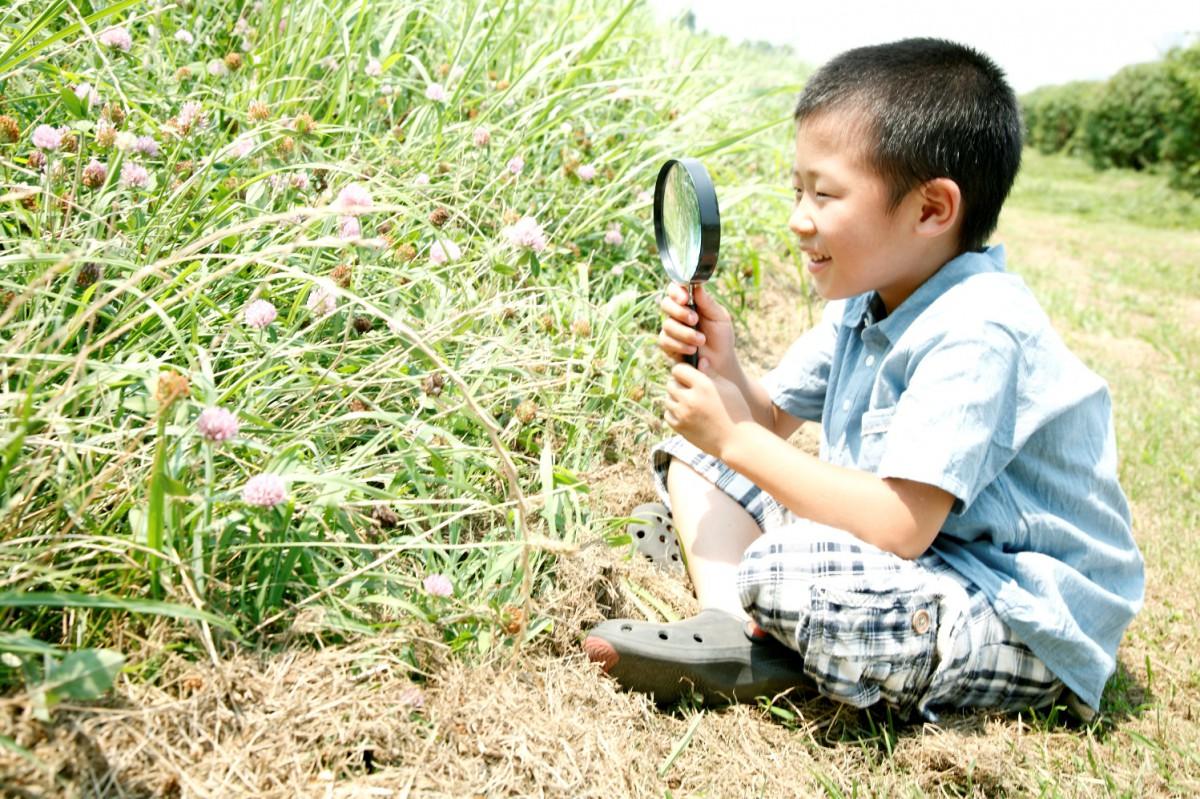 【目からウロコ!】七田式教育の代表 七田厚が語る幼児教育「その時、父は…」第11回 七田 厚