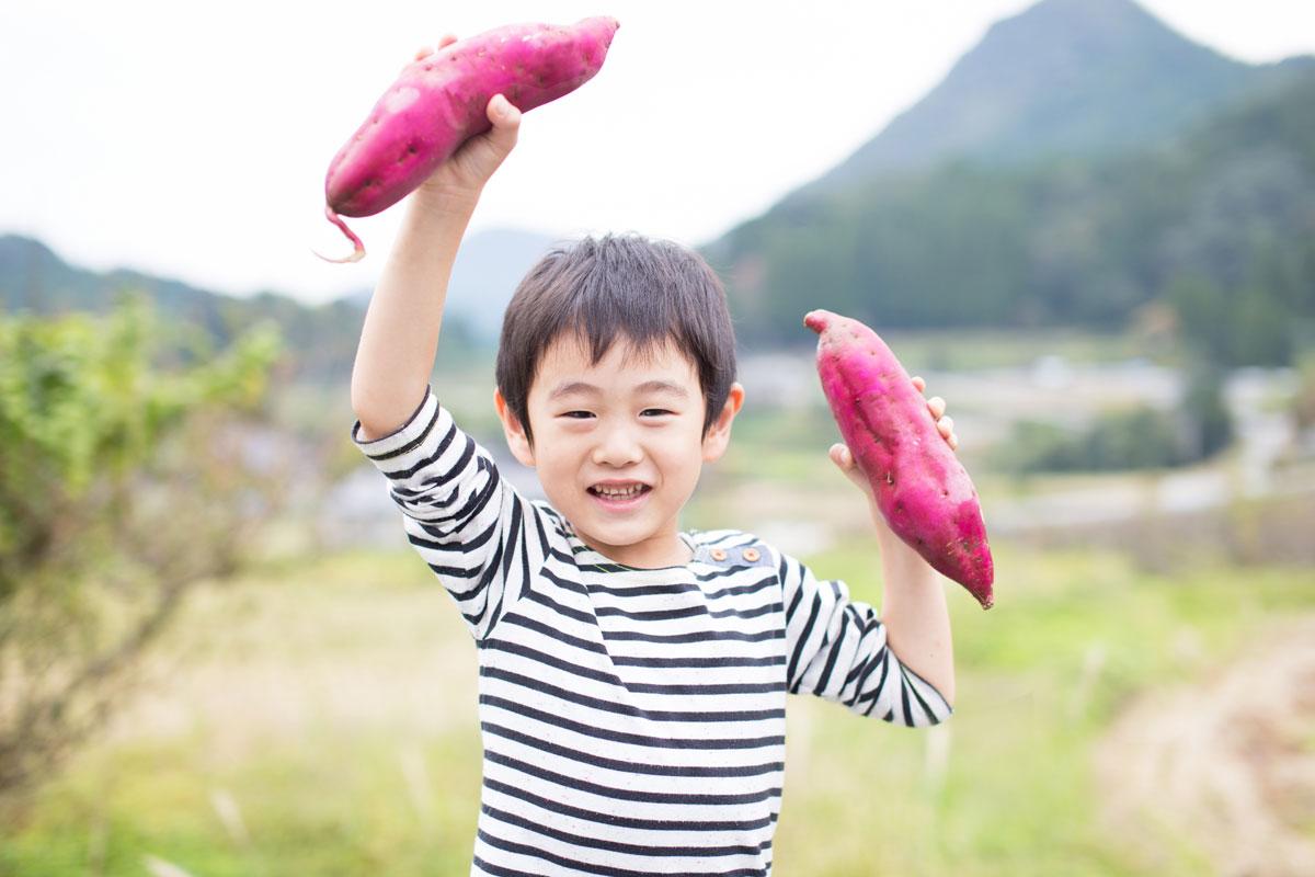 子供も大好き!秋が旬のさつまいもの栄養満点アレンジレシピ