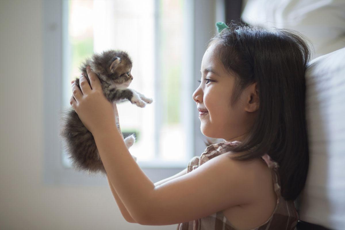 犬・猫…。妊婦さん、子供とペットが一緒に楽しく暮らせるためのポイント