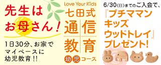 1904_七田式通信教育幼児コース